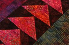 Close up of a Border on Evs Quilt.JPG